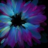 Abstracte neonbloemblaadjes. Vector illustratie. Stock Fotografie