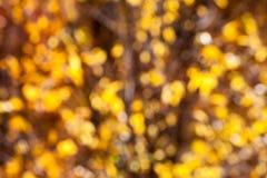 Abstracte oranje onduidelijk beeldachtergrond Royalty-vrije Stock Foto