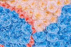 Abstracte regenboog Kleurrijke mooi nam bloemdocument achtergrond toe Stock Foto's