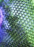 Abstracte reptieltextuur Royalty-vrije Stock Foto