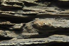 Abstracte rotstextuur Stock Foto's
