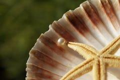 Abstracte samenstelling met een perl stock afbeeldingen