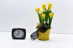 Abstracte samenstelling van gele gele narcissen Stock Foto's