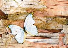 Abstracte samenstelling van vlinders, berkeschors en stro Stock Fotografie