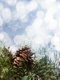 Abstracte seizoengebonden achtergronden Royalty-vrije Stock Foto's