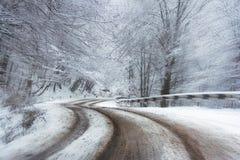 Abstracte snelheidsweg in de winterbos Stock Foto's