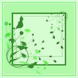 Abstracte tekeningskader en installaties in groene tonen Voor sjaal, scrapbooking document stock illustratie