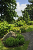 Abstracte topiary of karikomi Royalty-vrije Stock Afbeeldingen