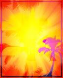 Abstracte Tropische Achtergrond Royalty-vrije Stock Fotografie
