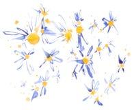 Abstracte Vectorcamomiles Vector illustratie Royalty-vrije Stock Afbeeldingen