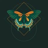 Abstracte vlinder Stock Afbeelding