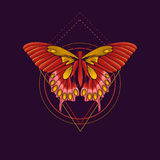 Abstracte vlinder Royalty-vrije Stock Fotografie