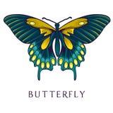 Abstracte vlinder Royalty-vrije Stock Foto's