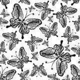 Abstracte vlinder naadloze achtergrond Stock Foto