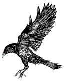 Abstracte vogel stock illustratie