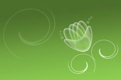 Abstracte waterlelie op een groene achtergrond Stock Foto