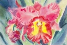 Abstracte waterverf originele het schilderen rozerode kleur van orchideebloem Royalty-vrije Stock Afbeelding