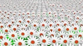 Abstracte witte bloemen in rijen royalty-vrije illustratie