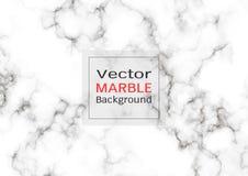 Abstracte witte marmeren textuur, Vectorpatroonachtergrond stock illustratie