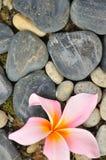 Abstracte Zen III Royalty-vrije Stock Afbeelding