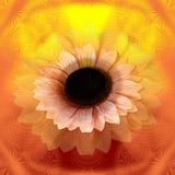 Abstracte zonnebloem Stock Fotografie