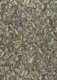 Abstractie voor de achtergrond donkere grijze stof met bloemenornamenten die van bosbladeren worden gemaakt Royalty-vrije Stock Foto