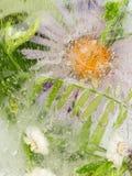 Abstraction avec la belle fleur Photo libre de droits
