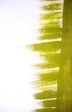 Abstraction de couleur verte Image libre de droits