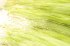 Abstraction en vert Images stock