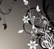 Abstraction florale Images libres de droits