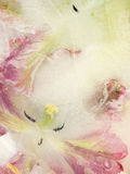 Abstraction with frozen flower tulip Stock Photography