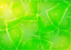 Abstraction-leaf-background vector 10 eps Stock Images