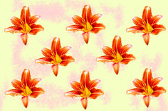 Abstraction with lily flowers Stock Image