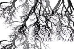 Abstraction noire et blanche Photos libres de droits