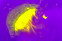 Abstraction of yellow paint on a violet background in the form of a jellyfish floating swimming in the ocean Royalty Free Stock Images