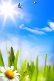 Abstracts beautifu spring background Stock Photo