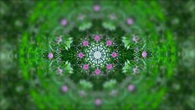 Abstracts. Beautiful illustrations flower and green grass with kaleidoscope effect background stock illustration
