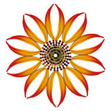 Abstracty illustration of Golden fire flower Stock Image