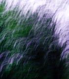 Abstraia a alfazema Foto de Stock Royalty Free