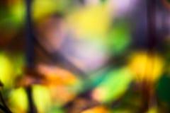 Abstraia o fundo borrado com cores amarelas, alaranjadas e verdes, foto fotografia de stock