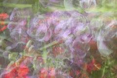 Abstraia o fundo floral Imagens de Stock Royalty Free