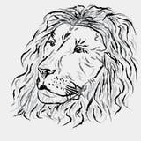 Abstraia o leão Fotos de Stock
