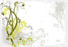 Abstraiga el fondo floral Fotografía de archivo