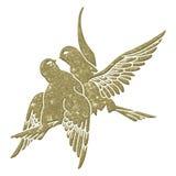 Abstraiga las palomas Fotos de archivo libres de regalías