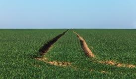 Abstrait agricole Photographie stock libre de droits