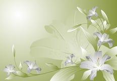 abstrakcj lilie Zdjęcia Royalty Free