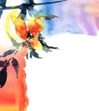 abstrakcjonistyczna akrylowa kwiecista ilustracyjna akwarela Obraz Royalty Free