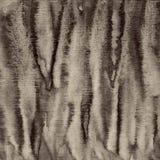 Abstrakcjonistyczna akwarela na papierowej teksturze jako tło W Sepiowej tonie Zdjęcie Stock