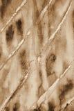Abstrakcjonistyczna akwarela na papierowej teksturze jako tło W Sepiowej tonie Obrazy Stock
