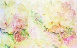 Abstrakcjonistyczna akwareli ilustracja z peoniami, kwiat Fotografia Royalty Free